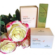 Подарочный набор The Skin House Vital Bright Gift Set